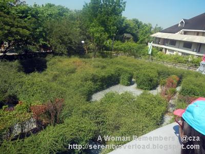RAVE-pasig-maze-garden