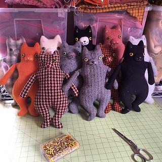 11 kitties, ready for dressing.