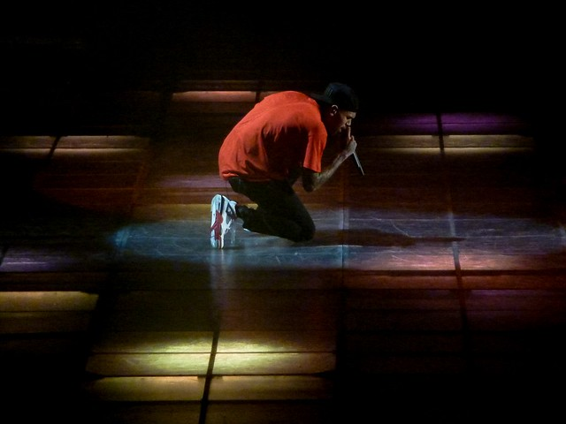Chris Brown - Carpe Diem Tour - Bercy, Paris (2012)