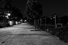 Quiet alley in industrial area Georges Besse