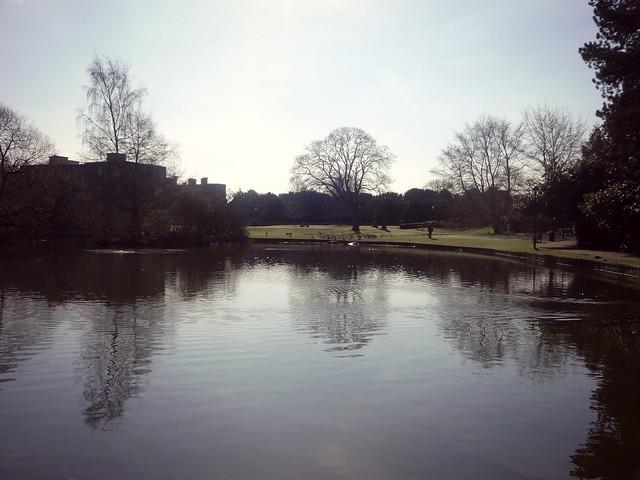York University lake