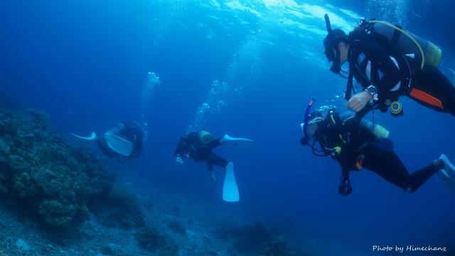 初めての水中世界へ♪