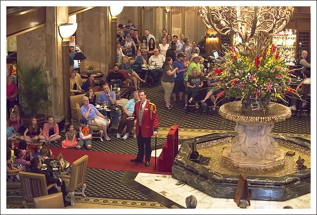 Peabody Hotel Ducks 2015-04-11 2