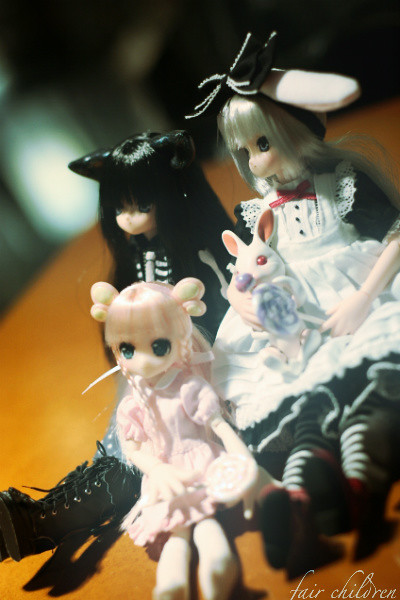 Pet Expo - Azone 4