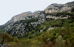 Monte Foltrone (Monti Gemelli - Abruzzo)
