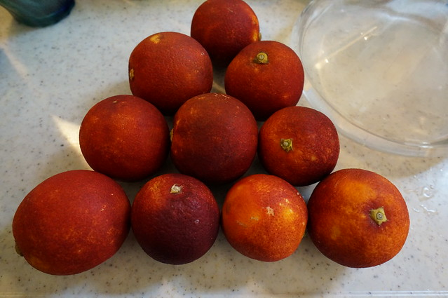 ブラッドオレンジ_DSC07114