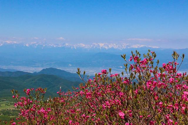 2014-06-15_00644_四阿山.jpg