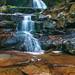 Laurel Falls by Kurt Miller