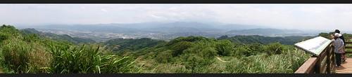鶯歌千年榕樹處全景圖
