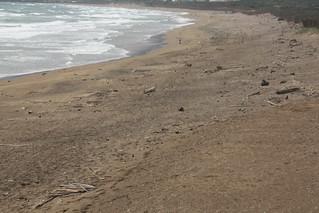 淨灘後。攝影:洪郁婷