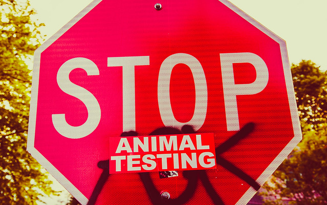 Animal Testing Definition Meaning
