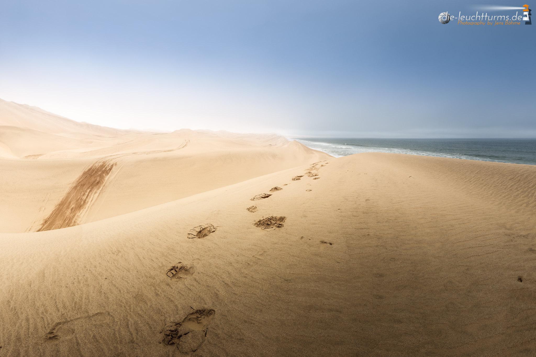 Where the desert meets the ocean