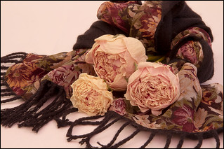 Peonies And Scarf