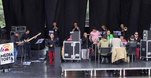 Audiciones Salsa Al Parque 2015
