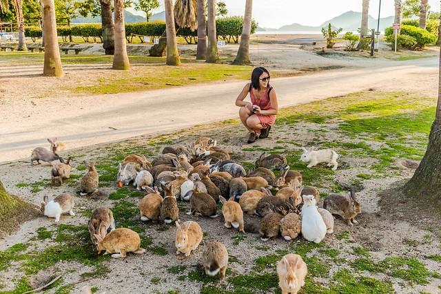 Okunoshima - Bunny Island