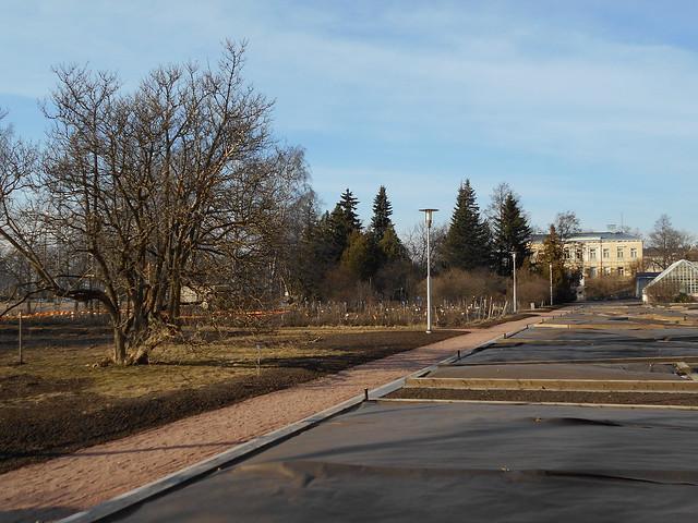 Helsingin Kaisaniemen kasvitieteellisen puutarhan remontti - Tilannetta 19.3.2015 H