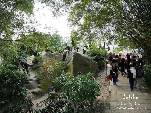 台北登山爬山象山步道 (5)