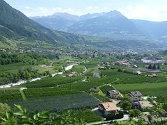Blick vom Marlinger Höhenweg
