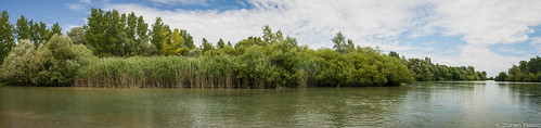 river landscape croatia hrvatska drava međimurje međimurjecounty