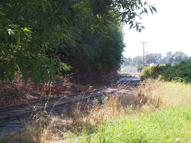 BNSF Siding: My guess is that the Kulshan Trail took over this right of way.