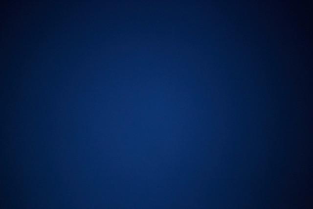 Blue Collar 16