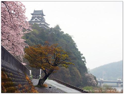 犬山城-2