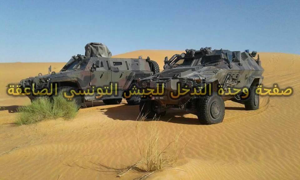 Armée Tunisienne / Tunisian Armed Forces / القوات المسلحة التونسية - Page 8 28397075912_60fd5ae821_o