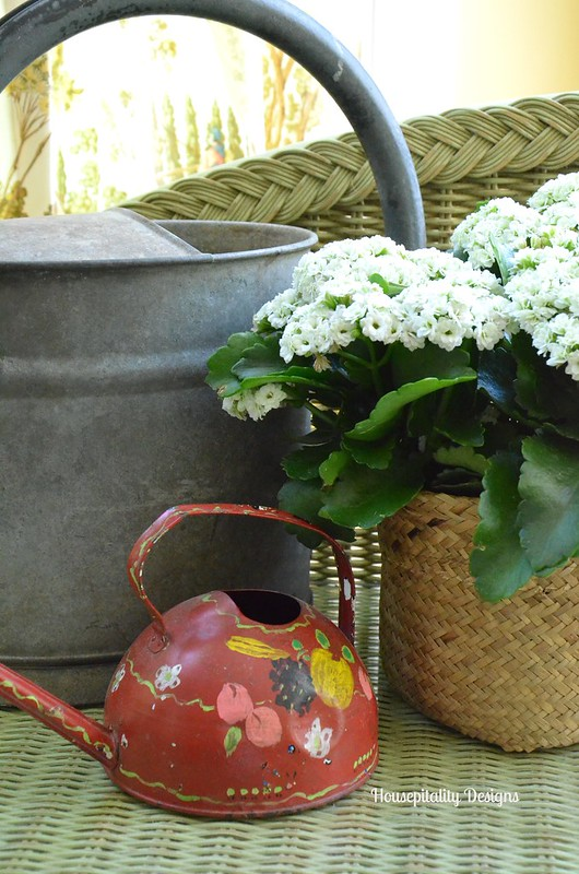 Sunroom/Vintage watering cans-Housepitality Designs