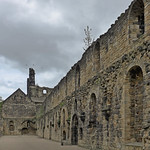 Kirkstall Abbey (Ruins)