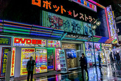 Robot Resstrautant - Tokyo