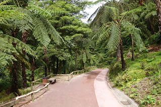 Caldeira Velha, Ilha de São Miguel, Açores