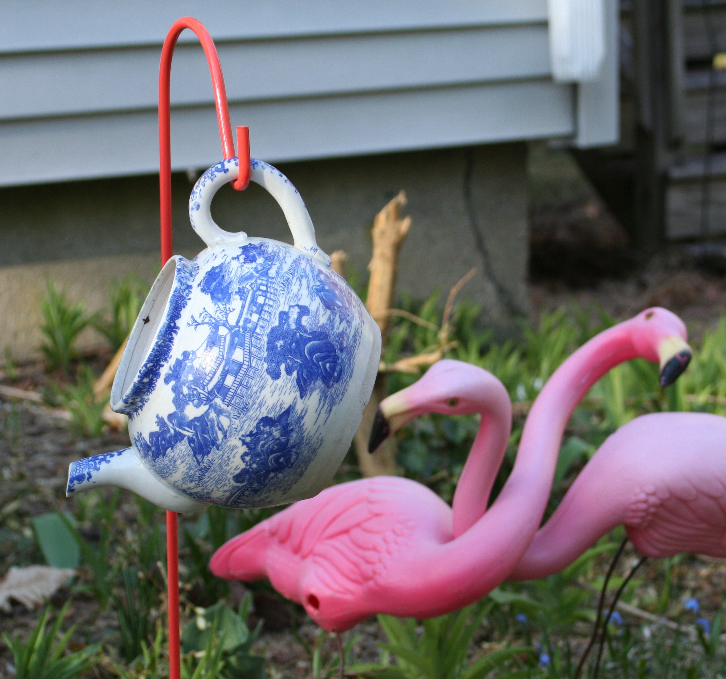Tea for Two Flamingos