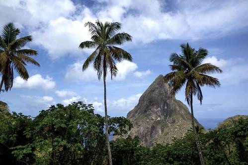 ocean trip sea vacation beach island view unesco palmtree tropical tropic caribbean 365 soufriere saintlucia 5thanniversary worldheritagearea petitpiton stluia kats365 hermitageterrace