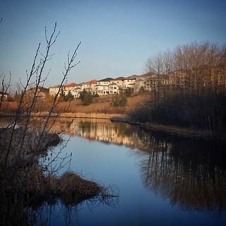 a beautiful day in the neighbourhood ...  #yyc #spring #water #wetland #reflections #neighborhood #calgary #capturecalgary #edgemont #outwalking #blue #bluesky #niceday #foundspring