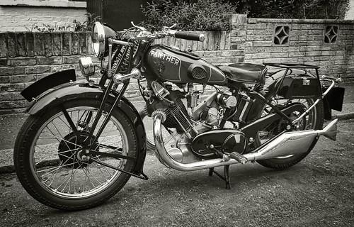 panther '31