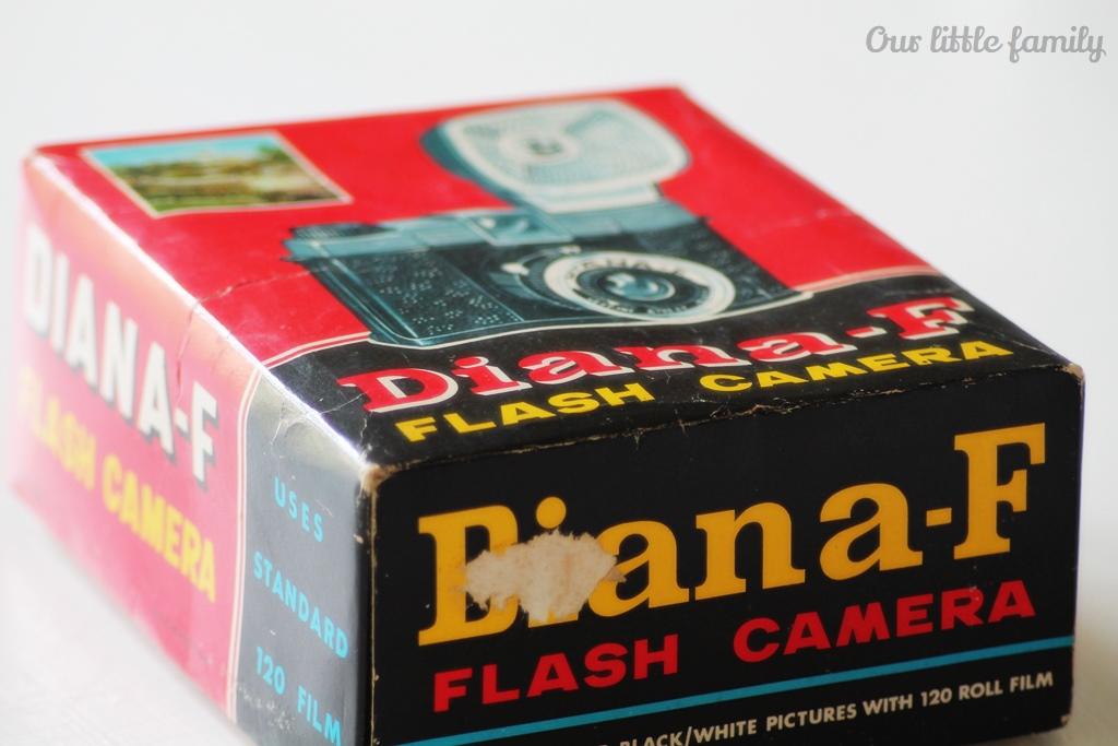 dianaF1