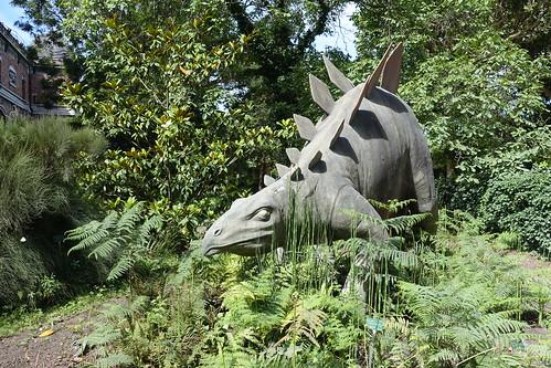 Jardin des plantes - Zoo jardin des plantes ...