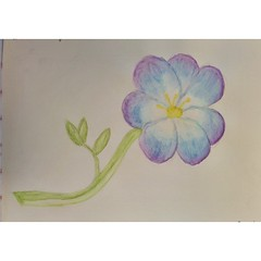 Today I did a #commutedrawing again! Watercolour pencil flower!