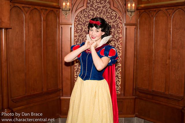 Meeting the Princesses in Fantasyland