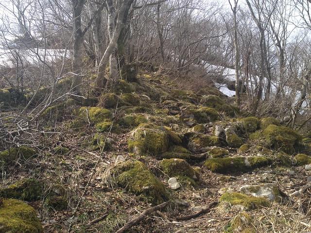 伊吹山 北尾根縦走路 岩苔登山道