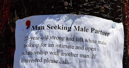 Seeking Partner