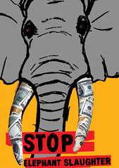 STOP ELEPHANT SLAUGHTER