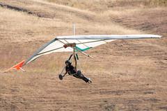 Hang Gliding at Ed Levin County Park