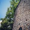 Stone wall, 5/16/15