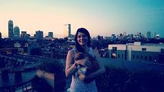 #czechgirl #cat #roofdeck #boston #skyline #bostonskyline #sunset #southend