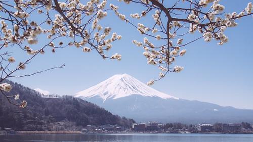 japan landscape pentax mountfuji 日本 kawaguchiko k3 河口湖 lakekawaguchi 富士五湖 山梨県 fujifivelakes yamanashiprefecture flickrhongkong flickrhkma