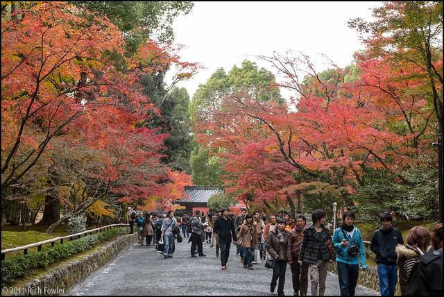 Entering Kinkakuji 2