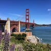 A gorgeous day in San Francisco -- wish you ALL could be here! #goldengatebridge #sf #sanfrancisco #california #iPhone6 #nofilter #luckyme