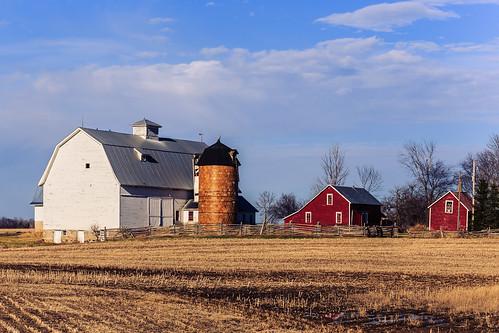 Walsh Farm