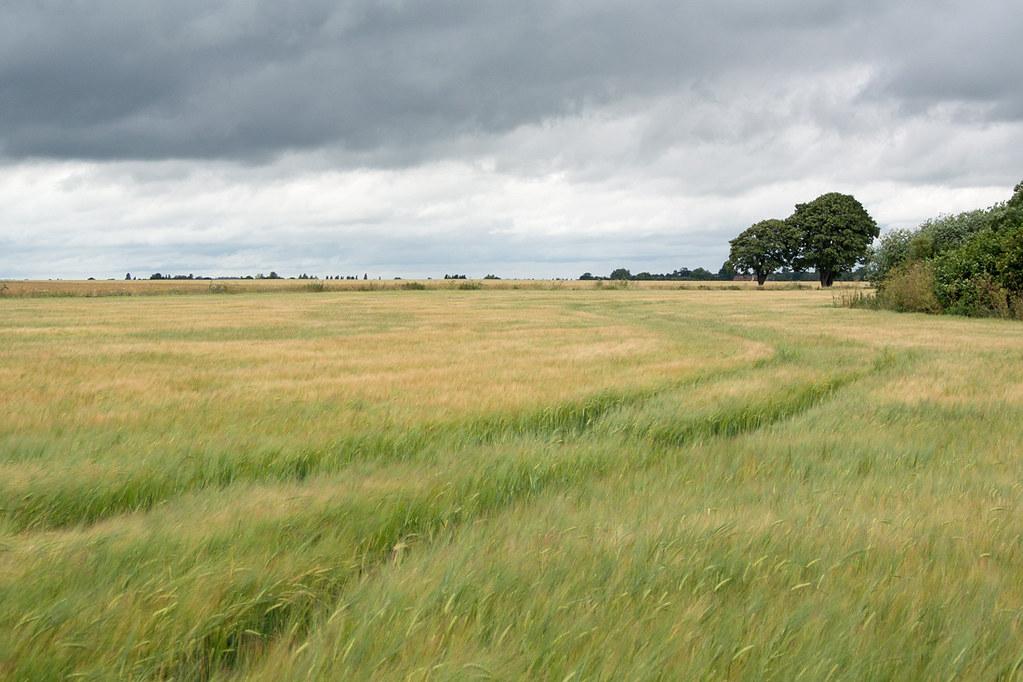Near Arlesey Arlesey to Letchworth Garden City
